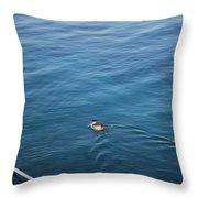 A Duck Throw Pillow