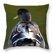 A Duck's Tale Throw Pillow