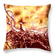 A Eaglet In Down Throw Pillow