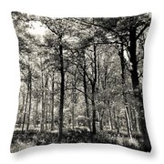 A English Forest Throw Pillow