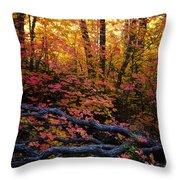 A Fall Forest  Throw Pillow
