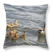 A Family Affair Throw Pillow by Cim Paddock