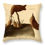 A Family Of House Wrens Throw Pillow