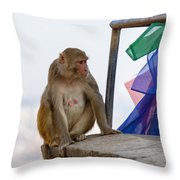 A Female Macaque On Top Of Wall Throw Pillow