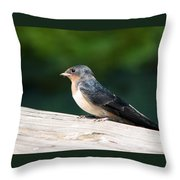 A Female Purple Martin Is Watching You Throw Pillow