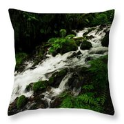 A Fern On An Isalnd  On Wahkeena Creek Throw Pillow