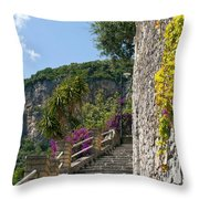 A Few Of Many Throw Pillow