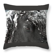 A Few Of My Favorite Things Throw Pillow by Fran J Scott