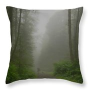 A Few Steps Into The Mist Throw Pillow