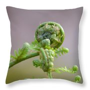 A Fiddlehead Abstract Throw Pillow