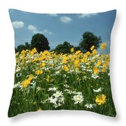 A Field Of Spring Throw Pillow