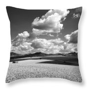 A Field Of Wheat. Limagne. Auvergne. France Throw Pillow