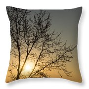 A Filigree Of Branches Framing The Sunrise Throw Pillow