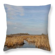 A Fine Place For Ducks Throw Pillow