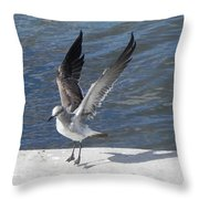 A Firm Landing Throw Pillow