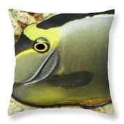 A Fish From The Ocean Throw Pillow