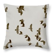 A Flock Of Flying Jackdaws Throw Pillow