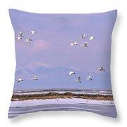 A Flock Of Swans Flies Over Water Throw Pillow
