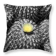 A Flower Among Thorns Throw Pillow