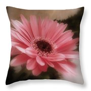 A Flower For Brooke Throw Pillow