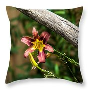 A Flower Frame Throw Pillow