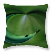 A Fly And His Shadow Polar View Throw Pillow