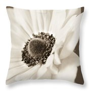 A Focus On The Details Throw Pillow by Caitlyn  Grasso