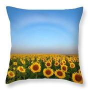 A Fog Bow Over The Colorado Sunflower Fields Throw Pillow