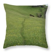 A Footpath Above The Cliff Throw Pillow