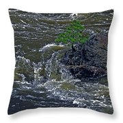 A Forest Of One Throw Pillow