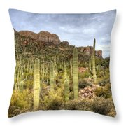 A Forest Of Saguaros  Throw Pillow