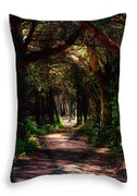 A Forest Path -dungeness Spit - Sequim Washington Throw Pillow