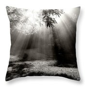A Fork In The Road Throw Pillow