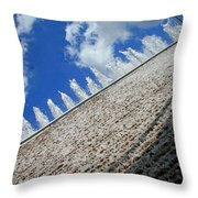 A Fountain Through A Window Throw Pillow