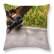 A Fourth Baby Barn Swallow Wants In On Lunch Throw Pillow