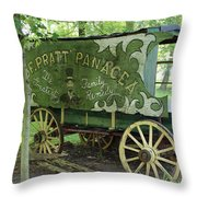 A Frequent Visitor  Throw Pillow