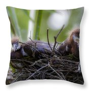 A Fresh Start Throw Pillow