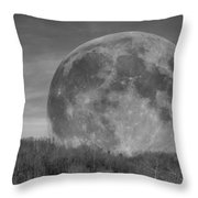 A Friend At Night Throw Pillow