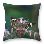A Friendly Butterfly Smile Throw Pillow