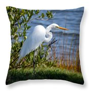 A Friendly Wave Throw Pillow