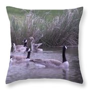 A Frolicsome Goosling Throw Pillow