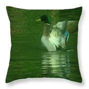 A Frolicsome Mallard Throw Pillow
