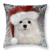 A Frosty Morning Throw Pillow