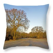 A Frosty Sunday Morning Throw Pillow