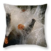 A Froth Of Milkweed Throw Pillow