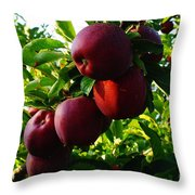 A Full Branch  Throw Pillow
