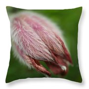A Furry Little Blossom Throw Pillow