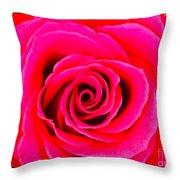 A Fuschia Pink Rose Throw Pillow