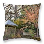 A Garden Walk In February Throw Pillow