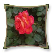 A Gem On The Vine Throw Pillow